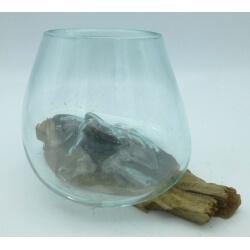 vase ou aquarium 23A