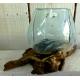 vase ou aquarium SM27