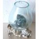 vase ou aquarium C07