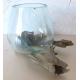 vase ou aquarium B09