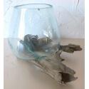 Vaso o acuario B09