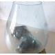 vase ou aquarium DA1