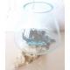 vase ou aquarium BA14