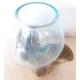 vase ou aquarium BA32