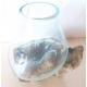 vase ou aquarium BA25