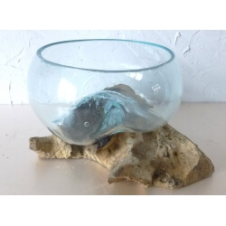 vase ou aquarium évasé TER5