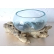 vase ou aquarium évasé TER6
