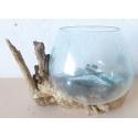 vase ou aquarium CA36