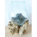 vase ou aquarium SA67-34cm