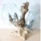 Double vase ou aquarium DBM67