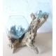 Double vase ou aquarium DBM68