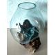 Vaso o acuario X34