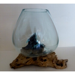 vase ou aquarium C2