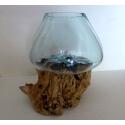 vase ou aquarium C3