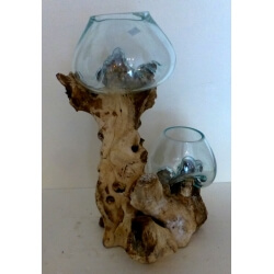 Double vase ou aquarium AB