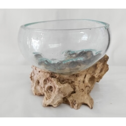 vase ou aquarium évasé SL5