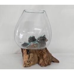 vase ou aquarium B11