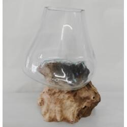 vase ou aquarium B12
