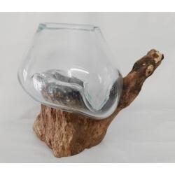 vase ou aquarium B13