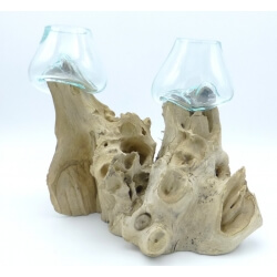 Double vase ou aquarium DoS2