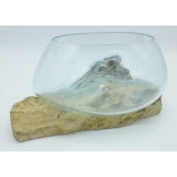 vase ou aquarium évasé SaB3
