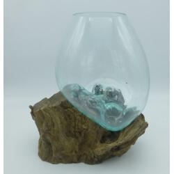 Vaso o acuario D21
