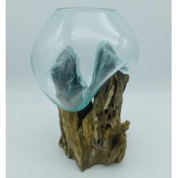 vase ou aquarium D23