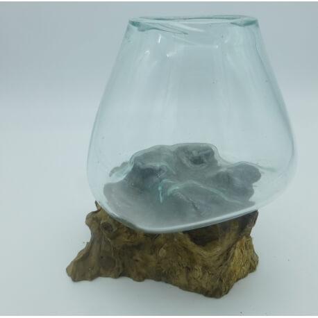 vase ou aquarium B44