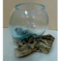 vase ou aquarium A35