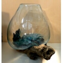vase ou aquarium D48