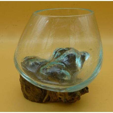 vase ou aquarium B3F